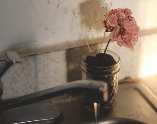 Прекратите выбрасывать использованную кофейную гущу! Вот 15 гениальных способов использования ее во всем доме