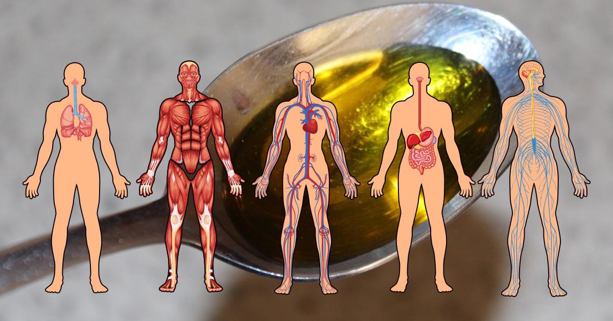 Народный рецепт от старости: масляное очищение всех органов и систем