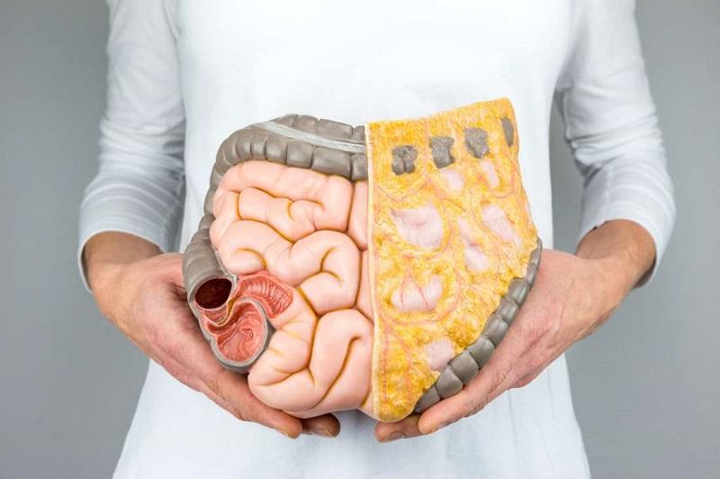 Салат-щетка для стенок кишечника. Оздоровление без таблеток, похудение без голодания. Советам врача стоит доверять.