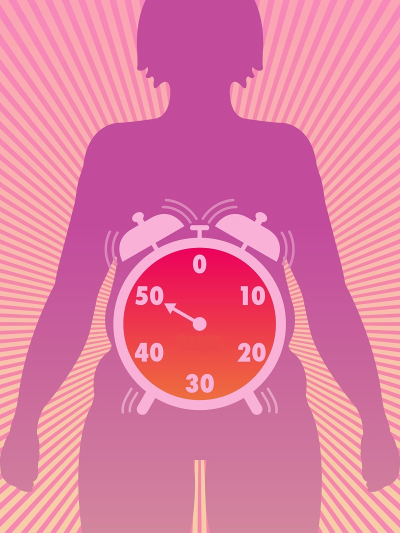 Фитоэстрогены против жировых отложений!
